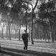 Tumbas y héroes: Cementerio civil de Madrid